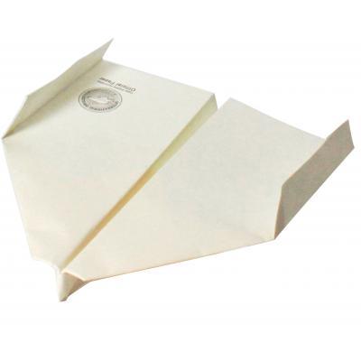 世界記録を出した紙ヒコーキのロマンあふれるプレゼント