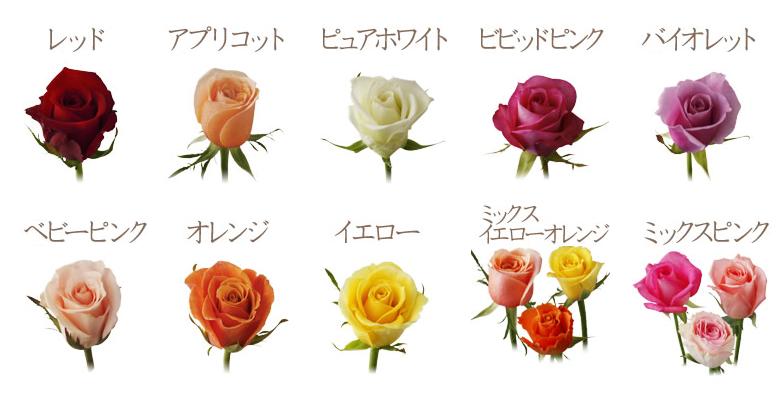 10色から選べるバラの花束