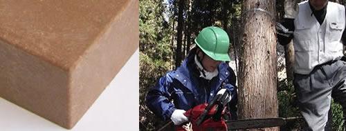 自然に優しい間伐材を再利用