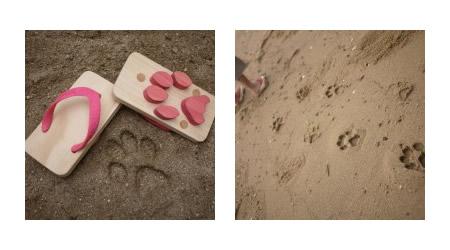 砂浜に猫の足跡が残せるキッズのビーチサンダル